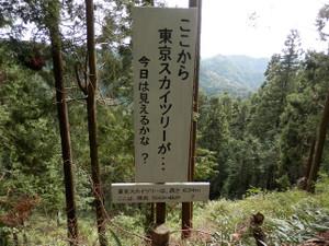 Hiwadakaoburi_20121008_195