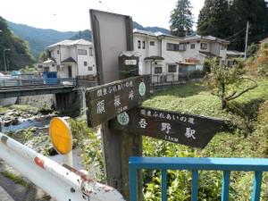 Hiwadakaoburi_20121008_247