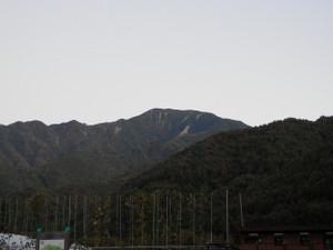 Kobushikarisaka_20121013_023