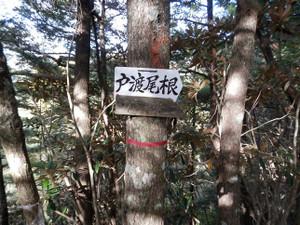 Kobushikarisaka_20121013_082