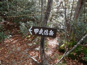 Kobushikarisaka_20121013_108