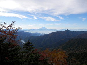 Kobushikarisaka_20121013_147