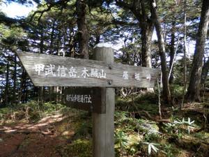 Kobushikarisaka_20121013_438