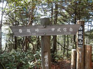 Kobushikarisaka_20121013_445