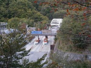 Kobushikarisaka_20121013_607