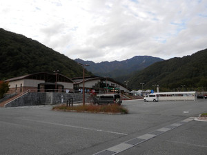 Kobushikarisaka_20121013_621