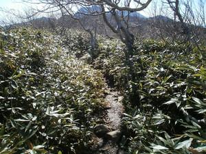 Hiuchiyama_20121020_185