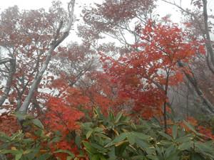 Tanigawadake_20121027_153