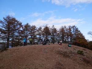Takanosuyama_20121103_259