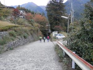 Takanosuyama_20121103_320