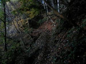 Ryokamisan_20121118_029