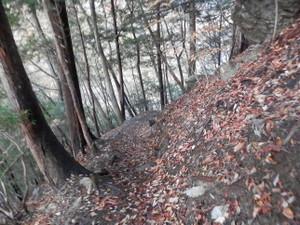 Ryokamisan_20121118_047