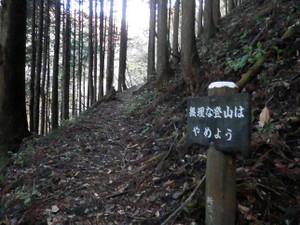 Ryokamisan_20121118_050