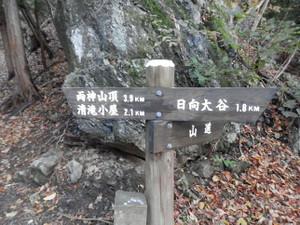 Ryokamisan_20121118_065