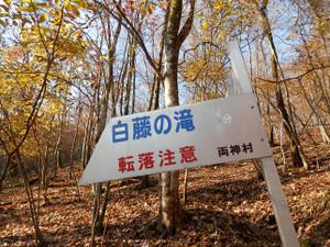 Ryokamisan_20121118_093
