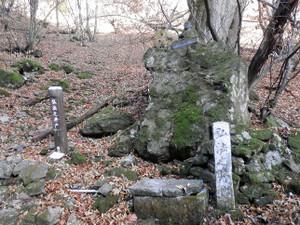 Ryokamisan_20121118_100
