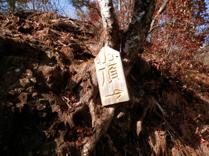 Ryokamisan_20121118_207