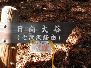 Ryokamisan_20121118_315