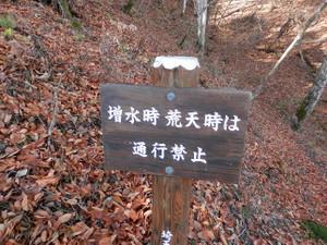 Ryokamisan_20121118_317