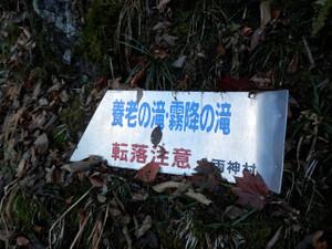Ryokamisan_20121118_339