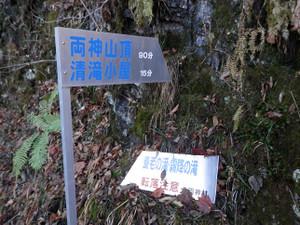 Ryokamisan_20121118_341