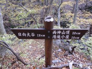 Ryokamisan_20121118_405