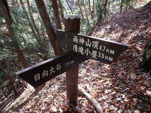 Ryokamisan_20121118_420