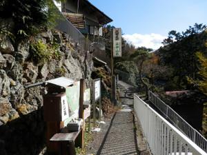 Ryokamisan_20121118_440