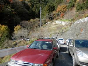Ryokamisan_20121118_446