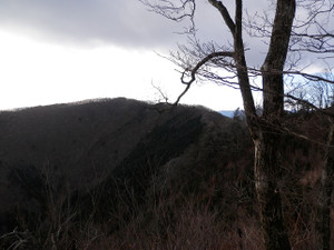 Okumusashi_bateikei_high20130103_22