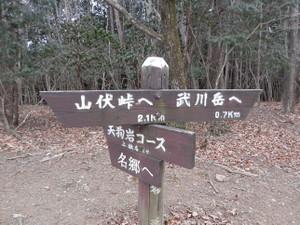 Okumusashi_bateikei_high20130103_33