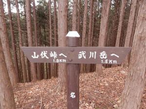 Okumusashi_bateikei_high20130103_35