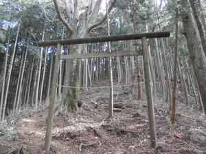 Okumusashi_bateikei_high20130103_42