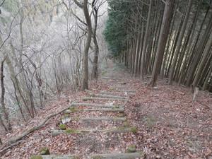 Okumusashi_bateikei_high20130103_73
