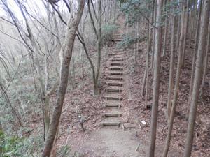 Okumusashi_bateikei_high20130103_75