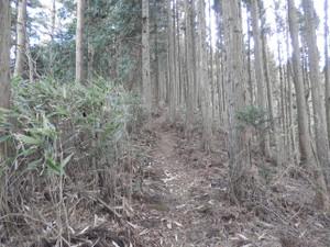Okumusashi_bateikei_high20130103_83