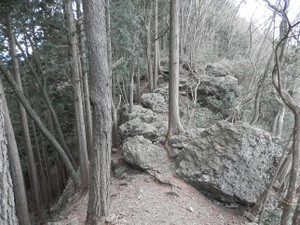 Okumusashi_bateikei_high20130103_96