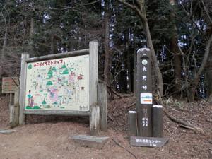 Okumusashi_bateikei_high2013010_101