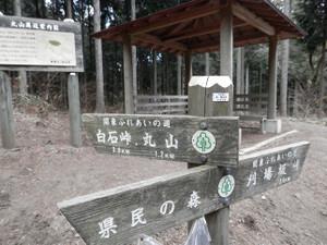 Okumusashi_bateikei_high2013010_103