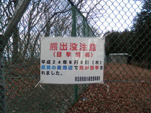 Okumusashi_bateikei_high2013010_110