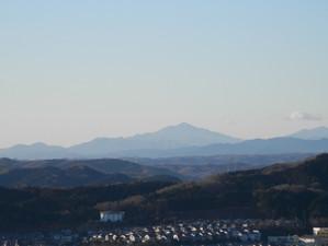 Hiwadakaoburi_20130126_041