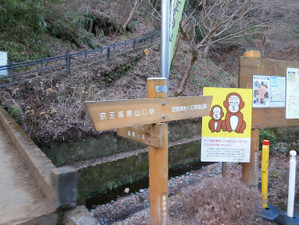 Takaojimbapiston_20130309_017