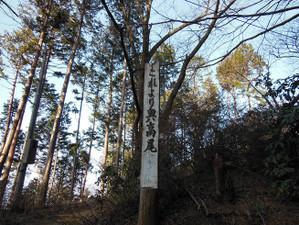 Takaojimbapiston_20130309_069
