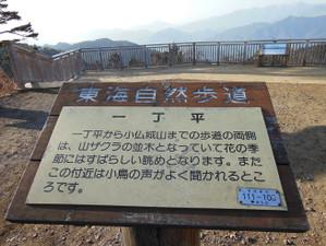 Takaojimbapiston_20130309_093_2