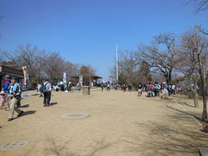 Takaojimbapiston_20130309_258