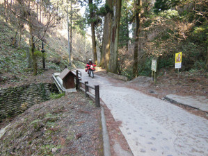 Takaojimbapiston_20130309_289