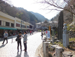 Takaojimbapiston_20130309_295