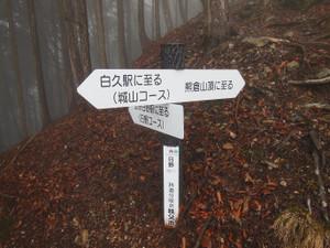 Kumakurayama_20130330_073