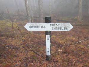 Kumakurayama_20130330_115