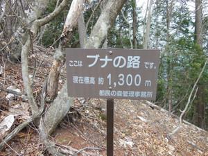 Mitosan_201304201_288